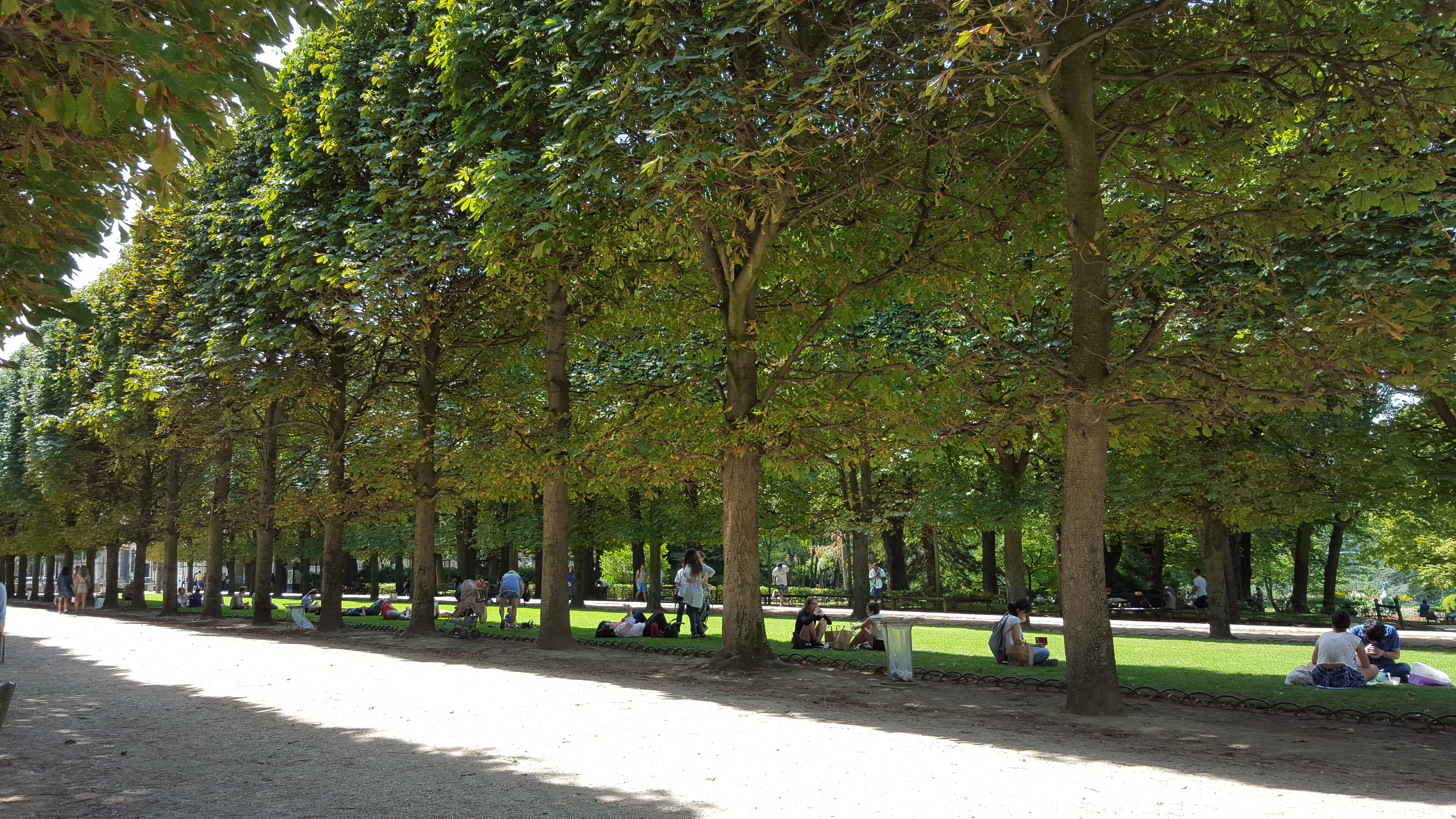 Jardin du luxembourg paris chantal cho for Jardin luxembourg